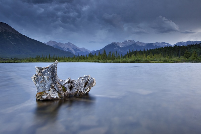 Banff Vermillion Lake Log, Kevin Johnson, Limerick Camera Club