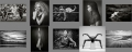 CreativePIC_mono_contact_sheet.jpg