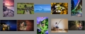 MidLouthCC_colour_contact_sheet.jpg