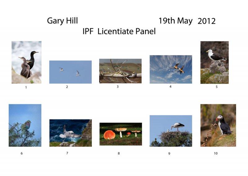 Gary-Hill-IPF-L_-Panel