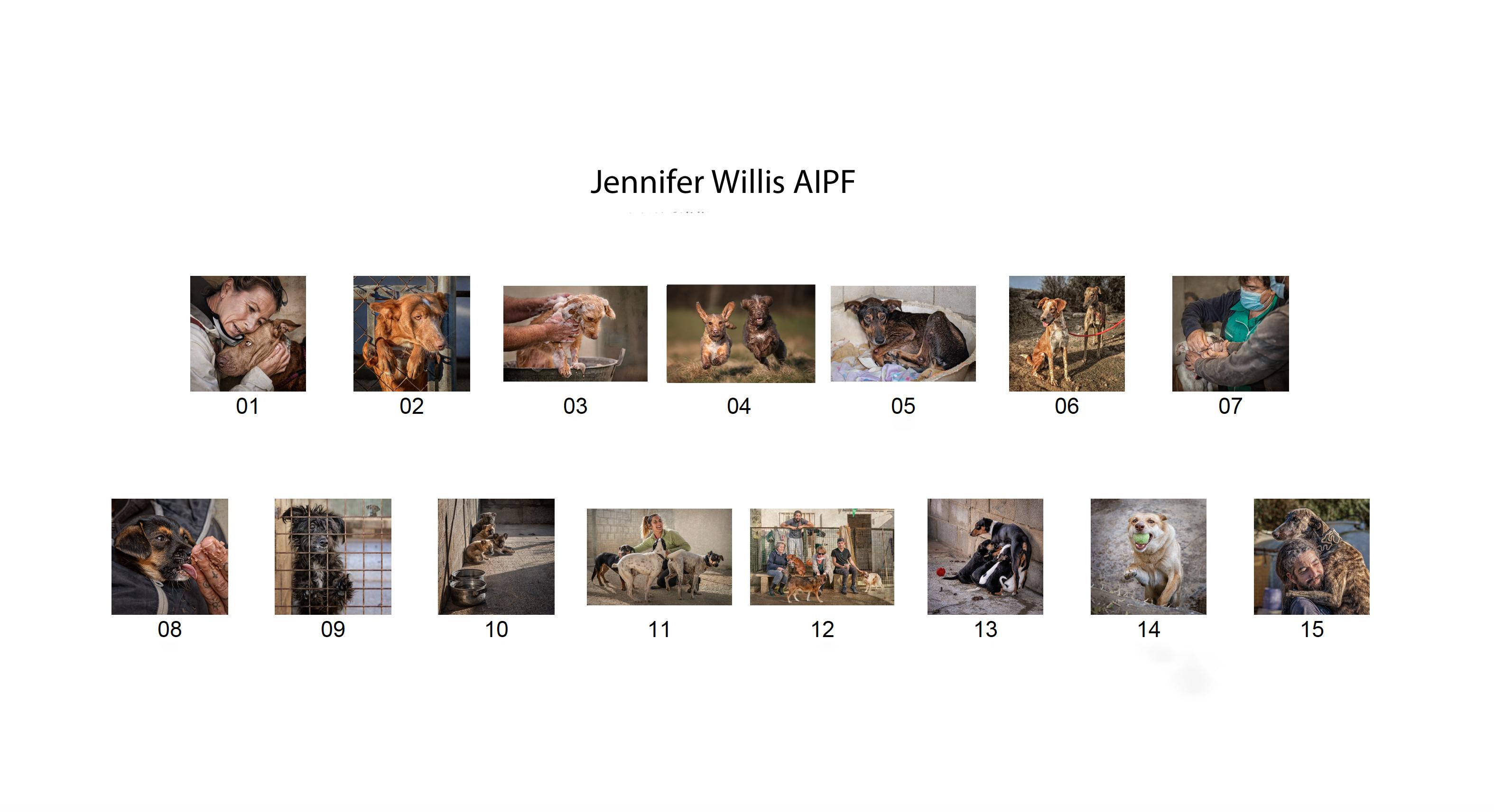 Jennifer Willis, AIPF, Catchlight Camera Club