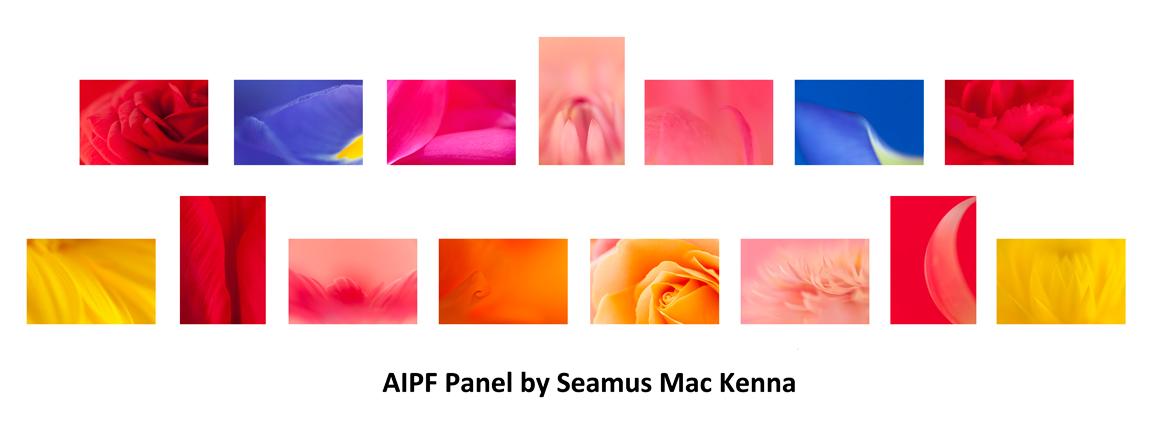 Seamus MacKenna