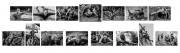 John Coveney AIPF_ Offshoot Photography Society