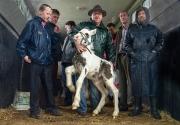 The Foal - John Butler