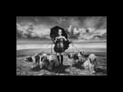 A Dog's Life - Libby Smith