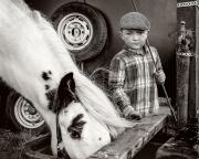 Monochrome Print Individual  Gold Medal -  Frank Condra - 'Boy and Pony' - Drogheda Photographic Club.jpg