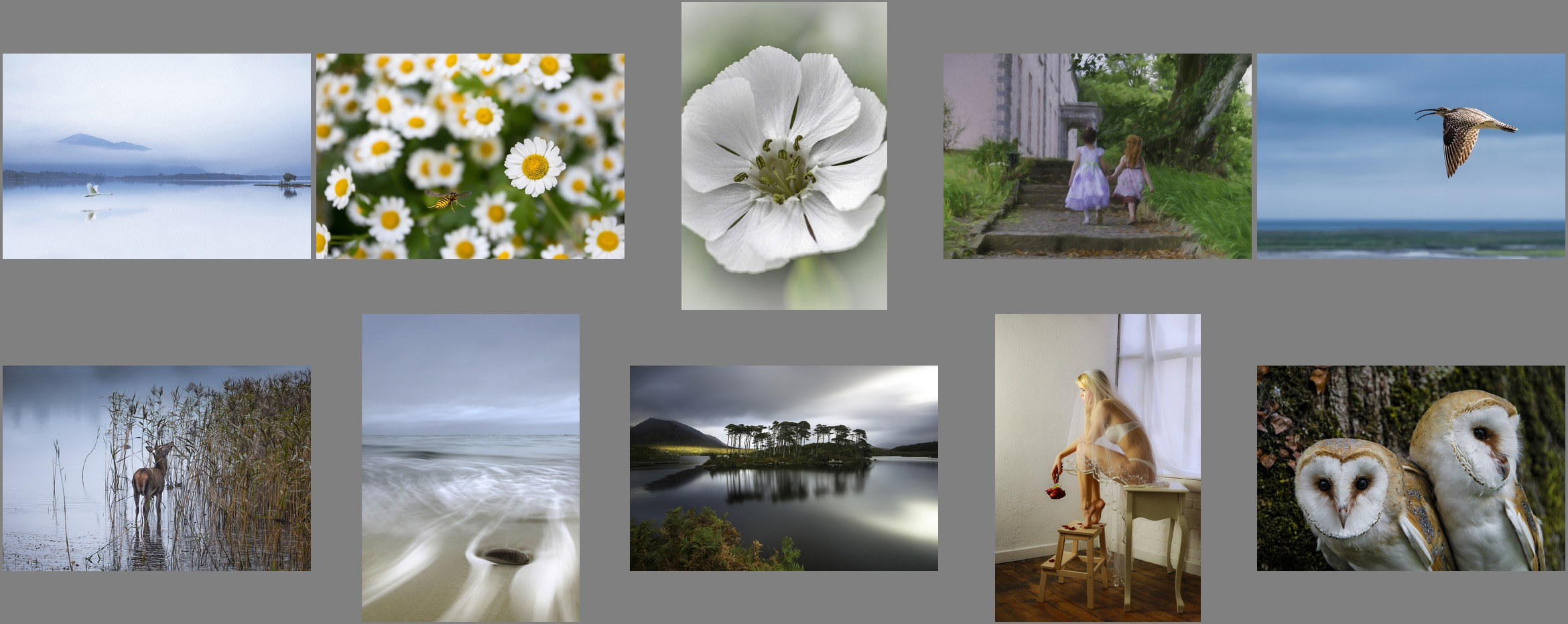 Joint 3rd Colour - Blackwater Photographic Society