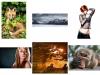S - Greystones Camera Club - Colour