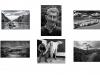 M - Palmerstown Camera Club - Mono