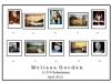 Melissa_Gordon_Panel-LIPF-2012small