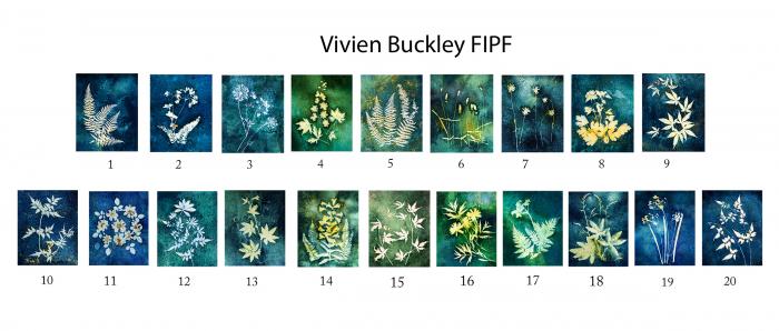 Vivien Buckley, FIPF, Mallow Camera Club