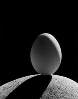 kilkenny-cc-egg_on_rock