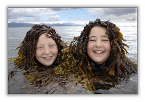 mermaids-marie-agnew