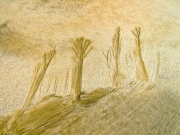 Colour Print - HM - Roger Nicholson - Sand Sculptures - Mullingar Camera Club