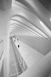 Monochrome Print - HM - Girto Miko - I'm Here Without You - Athlone Photography Club