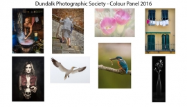Colour Print Panel - First Place - Dundalk Photographic Society