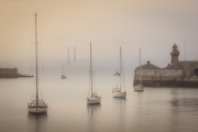 Gold Medal Colour - Stuart Bould - Harbour Mist - Celbridge Camera Club