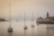 Gold Medal Colour - Stuart Bould - Harbour Mist - Celbridge Camera Club