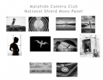 10. MCC National Shield Mono Thumbnails