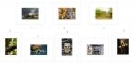 19. Dungarvan Camera Club NS 2016 Colour Panel