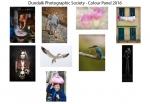 8. Dundalk PS colour Panel