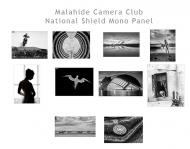 10. MCC National Shield Mono Thumbnails