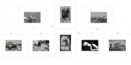 19. Dungarvan Camera Club Mono