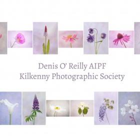 Denis O'Reilly, AIPF, Kilkenny Photographic Society