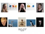 Cheryl Cox LIPF, Malahide Camera Club