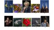 Brian D. Matthews LIPF, Carlow Camera Club