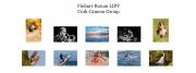 Finbarr Ronan LIPF, Cork Camera Group