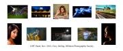 Tony Jobling LIPF, Offshoot Photographic Society
