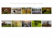 Finbarr O Shea LIPF, East Cork Camera Group