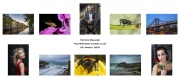 Patrick Maguire LIPF, Palmerstown Camera Club