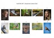Kaidi Niit LIPF, Greystones Camera Club