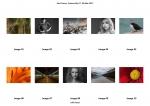 Paul Fraser LIPF, Enniscorthy Camera Club