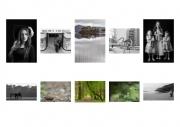 Trevor Stafford LIPF, Offshoot Photography Society