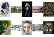 Anne Dowling LIPF, kilkenny photographic Society