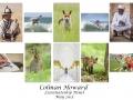 Colman Howard LIPF, Fermoy Camera Club.jpg