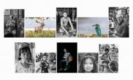 Dan Ryan LIPF, Kilkenny Photographic Society