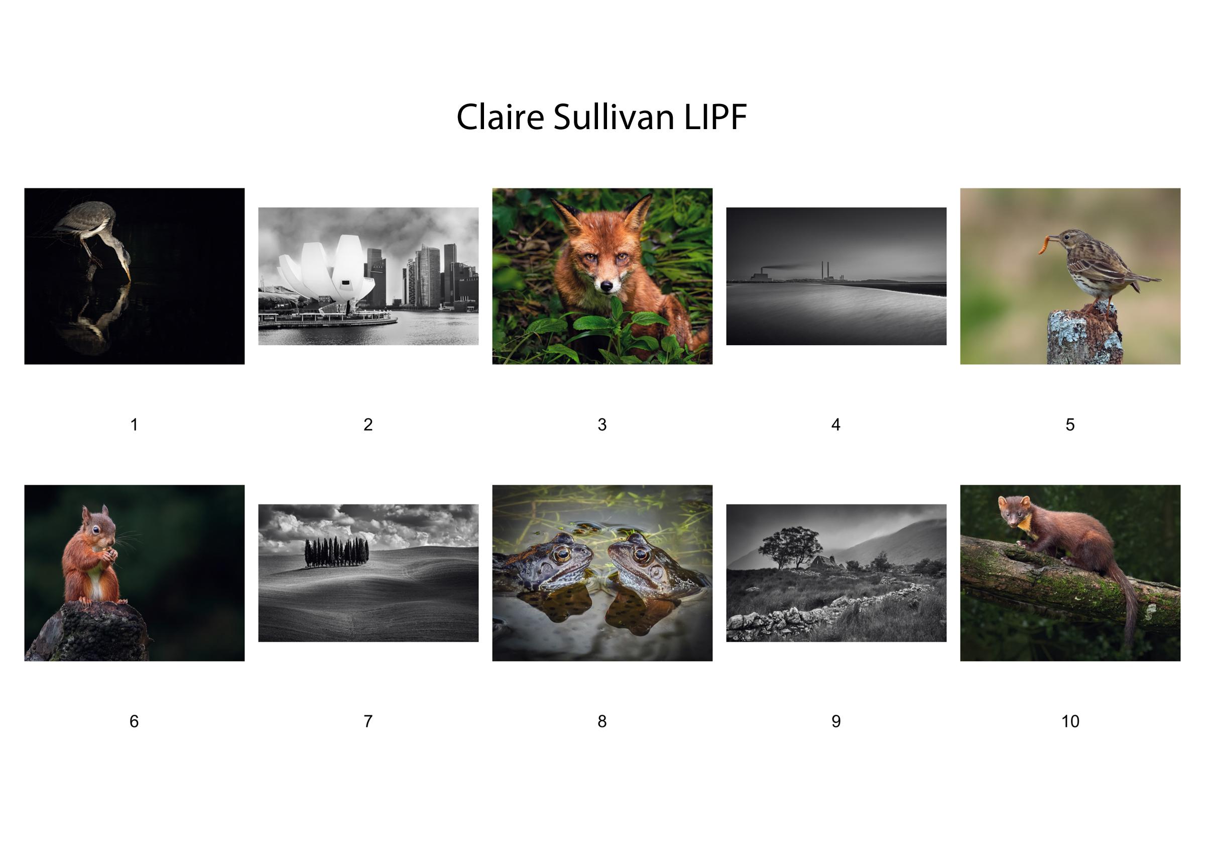 L13-Claire-Sulivan
