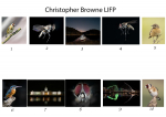 Christopher Browne, LIPF,  St Brigids