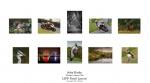 John Burke LIPF, Thurles Camera Club