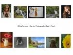 Olivia Fortune LIPF, Blarney photography club