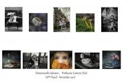Emmanuelle Galisson LIPF, Portlaoise Camera Club