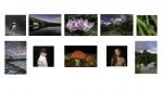 Ger O'Halloran. LIPF, Blarney Photography Club_