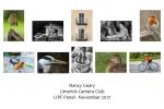 Nancy Geary LIPF, Limerick Camera Club