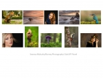 Seamus Mulcahy LIPF_ Blarney Photography Club