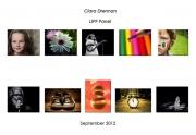 Ciara-Drennan-LIPF-Panel