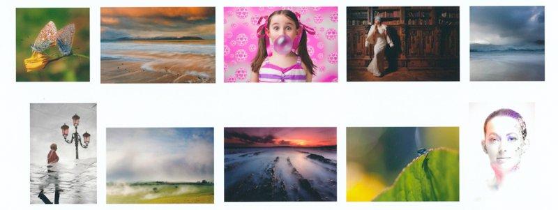 Limerick Colour Panel